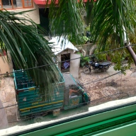 The view of our little street's very own security guard in his hut just outside our kitchen window.