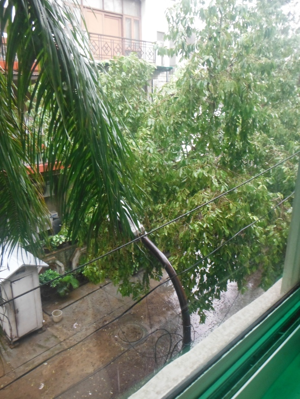 The view of our first monsoon rain outside our kitchen window.