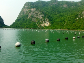 The Pearl Farm in the Fishing Village